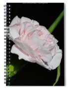 Pearl Spotlight Spiral Notebook
