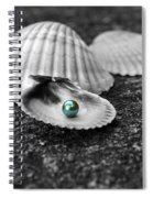 Pearls Of Wisdom I Spiral Notebook