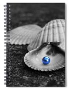 Pearls Of Wisdom II Spiral Notebook