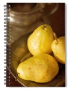 Pears And Great Grandpa's Silver Spiral Notebook