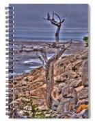 Pebble Beach 4 Spiral Notebook