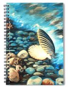 Pebble Beach And Shells Spiral Notebook