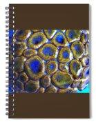 Pebbles Marbled Blue Spiral Notebook