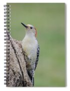 Pecker Spiral Notebook