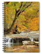 Pedelo Falls Spiral Notebook