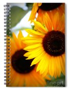 Peekaboo Sunflowers Spiral Notebook