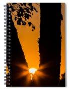 Peeking Sun Spiral Notebook