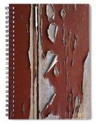 Peeling Paint Spiral Notebook