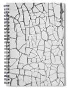 Peeling Paint Four Spiral Notebook