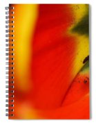Peering Into The Heart Of A Tulip Spiral Notebook