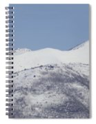 Pelican And Mountains Spiral Notebook