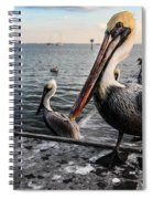 Pelican At The Pier Spiral Notebook