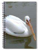 Pelican Brief Spiral Notebook
