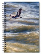 Pelican Briefly Spiral Notebook