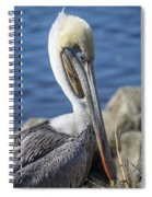 Pelican By The River Spiral Notebook