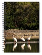 Pelican Clean Up Time Spiral Notebook
