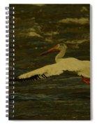 Pelican Flying Low Spiral Notebook