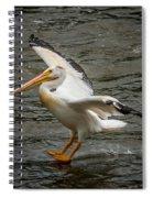 Pelican Landing Spiral Notebook