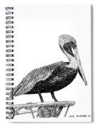 Monterey Pelican Pooping Spiral Notebook