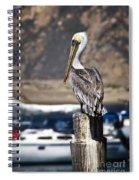 Pelican On Post Spiral Notebook