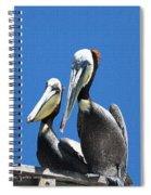 Pelican Pair At Oceanside Pier Spiral Notebook
