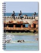 Pelican Pier Spiral Notebook