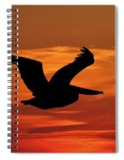 Pelican Profile Spiral Notebook