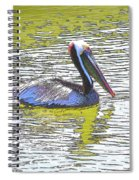 Pelican Reflections Spiral Notebook