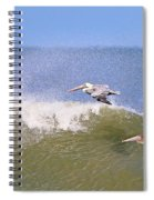 Pelicans 3868 Spiral Notebook