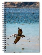 Pelicans Flocking On The Ocean Spiral Notebook