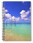 Pelicans Of Aruba Spiral Notebook