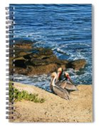 Pelicans On The Cliff - La Jolla Cove Spiral Notebook