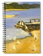 Pelicans On The Shore Spiral Notebook