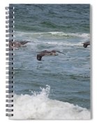 Pelicans Over The Water Spiral Notebook