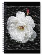 Pencil A Rose Spiral Notebook