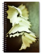 Pencil Shaving 2 Spiral Notebook