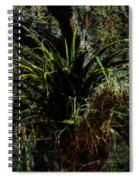Penciled Air Plant Spiral Notebook