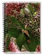Penny Postcard Christmas Spiral Notebook
