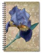 Penny Postcard Florentine Spiral Notebook
