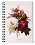 Peonies Engraved By Prevost Spiral Notebook