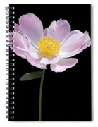 Peony Flower Portrait Spiral Notebook
