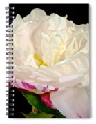 Peony In Repose Spiral Notebook
