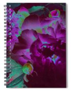 Peony Passion Spiral Notebook