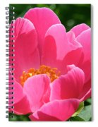 Peony Perfection Spiral Notebook