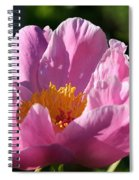 Peony Pink Spiral Notebook