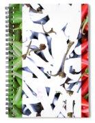 Peperoncino Spiral Notebook