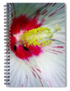 Peppermint Flame 02a Spiral Notebook
