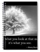 Perception Spiral Notebook