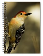 Perched And Ready Spiral Notebook