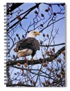 Perched Bald Eagle Spiral Notebook